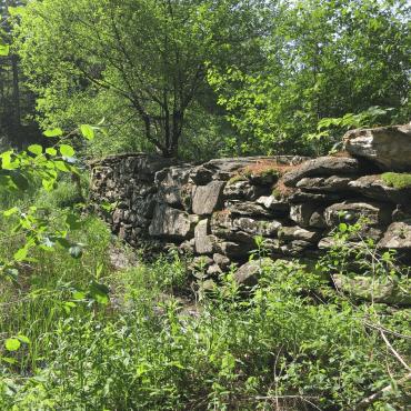 Massachusetts Audubon Society